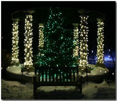 Green Bay Garden Of Lights Have You Ever Gone To The Green Bay Botanical Garden Check It Out