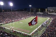 The Cougar Flag flies during the 2010 Apple Cup at Martin Stadium.