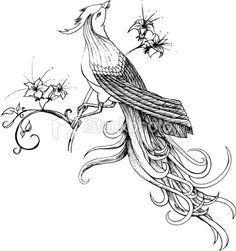 Beautiful feminine asian bird tattoo