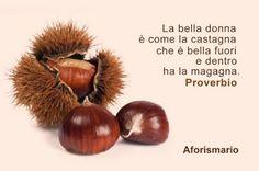 Aforismario®: Castagne - Aforismi, frasi e proverbi