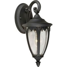 1-Light Outdoor Black Lantern with Clear Seeded Glass