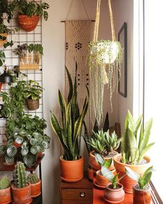 Plants are never too many! # Houseplants plants are never too many! plants, # house plants The Effective Pictures We Offer You About house plants decor front yards A quality picture Room With Plants, House Plants Decor, Hanging Plants, Indoor Plants, Patio Plants, Potted Plants, Garden Plants, Diy Plant Stand, Plant Stands