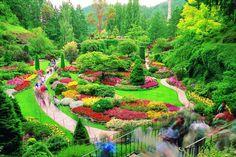 The Magical Garden, Butchart Gardens - Victoria, Vancouver Island, British Columbia, Canada