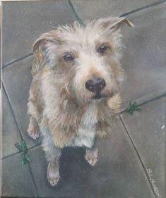 Commissioned Pet Portrait Acrylic Painting x Canvas Portrait Acrylic, Pet Portraits, Terrier, Paintings, Canvas, Pets, Animals, Tela, Animales