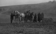 ニーチェの馬/タル・ベーラ