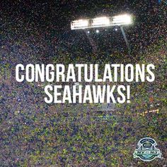 Congrats Seahawks:  Sea of Fans as far as the eye can see!!!!!