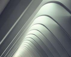 1X - Spine by Faisal Almalki