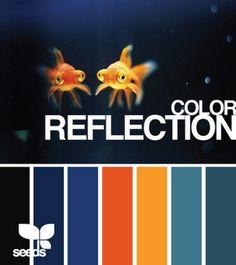 gold fish color palette