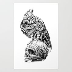Red-Tail Skull Art Print by BioWorkZ - $16.00