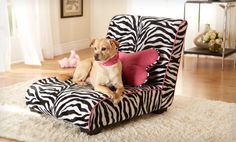 Groupon - $ 84.99 for an Enchanted Home Pet Elliot Lounger ($ 169.99 List Price). Two Options Available. Free Shipping and Returns..