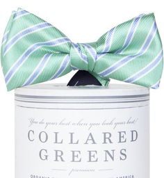 d5e2c8c6a404 American Made Collared Greens Silk Bow Tie Boys Whitman Classic Stripe Navy  Pink