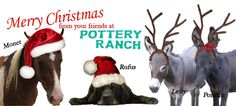 Pottery Ranch has unique gifts and stocking stuffers! Nutcrackers,  corkscrews, bordello tokens & MORE!  Plus, a great selection of gifts for Longhorn and Aggie fans!  PLUS, THRU CHRISTMAS we have hidden (but in plain view) six Reggae Santas throughout Store...Find one and receive a $ 50 Gift Certificate to the Pottery Ranch! Give away as a gift or use it yourself! Check us out at 6000 Hwy 281 N.. We are OPEN EVERY DAY of the year! 10am - 6pm or later