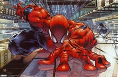 The Amazing Spiderman Wall Crawler Poster Print (24 X 36) - Item # SCO5325 - Posterazzi