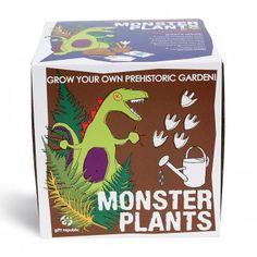 Pflanz-Set Monster :-) - Set mit Samen von prähistorischen Pflanzen.