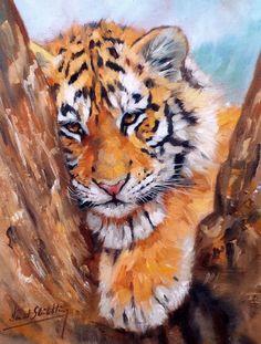 TIGER CUB Superb New DAVID STRIBBLING Oil Painting #Realism