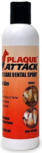 Plaque Attack Spray Economy Size Refill 8 oz -- Want additional info? Click on the image.