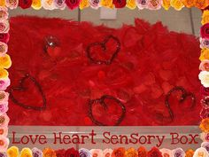 My Sister In Law gave us a huge bag of red feathers which were just perfect for a Valentines Day sensory box. The supermarkets also had lots of things which were perfect. My best buy were loads of scented petals, which added another dimension to the box. Here are some of the things we used. …