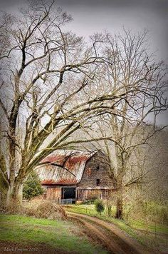 Sevierville Barn by m_powers.love the old barns by Gatlinburg Farm Barn, Old Farm, Country Barns, Country Life, Country Living, Country Roads, Country Charm, Barn Pictures, Country Scenes
