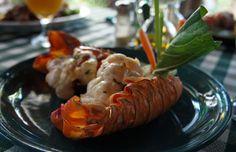 Cuban Food.  Lobster.