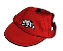Razorback hat for the dog.