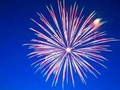 spider fireworks | Spider Firework