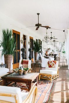 tropical vibes / lean timms photography