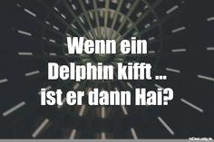 Wenn ein Delphin kifft ... ist er dann Hai? ... gefunden auf https://www.istdaslustig.de/spruch/1805 #lustig #sprüche #fun #spass