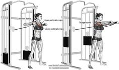 A compound upper-body exercise. Synergistic muscles: Clavicular (Upper) Pectoralis Major, Anterior Deltoid, and Triceps Brachii. Pulleys should be shoulder height. Best Shoulder Workout, Best Chest Workout, Chest Workouts, Gym Workouts, Chest Exercises, Cable Machine Workout, Cable Workout, Barbell Hip Thrust, Gym Plans