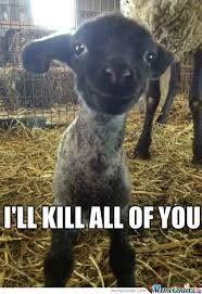 Killer lamb 0_0