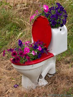 toilet planter, AGAIN!