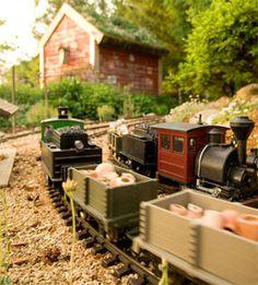 Train garden-Flower Factory, Stoughton, WI