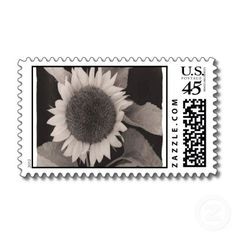 Black and white sunflower postage stamps!