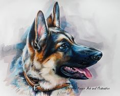 """German Shepherd Puppy, watercolor, colored pencils and acrylic on paper, 8x10"""""""