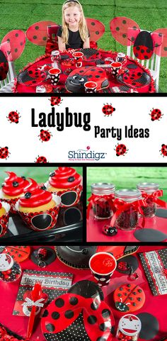 Is your daughter cute as a bug? Create a buggin' fun party with our Ladybug Fancy party tableware, decorations, balloons and favors. Explore all our girl birthday party ideas & save with promo code SZPINIT until PM EST. Baby Girl Birthday, Birthday Fun, 1st Birthday Parties, Birthday Ideas, Frozen Birthday, Ladybug Party Supplies, Miraculous Ladybug Party, Ladybug 1st Birthdays, Ladybug Girl