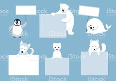 Arctic Animals Characters Show Blank Signs royalty-free stock vector art