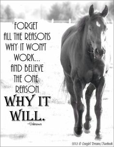 Positive quotes about strength, and motivational Inspirational Horse Quotes, Motivational Quotes, Inspiring Quotes, Great Quotes, Me Quotes, Qoutes, Rodeo Quotes, Racing Quotes, Horse Riding Quotes