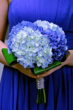 potten blue hydrangea | Deep Blue Wedding Maid of Honor Bouquet; Dark & Light Blue Hydrangea ...