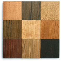 家具や楽器、建材などに使われる有用な木材の図鑑です。樹木の科目名、主産地、木材の色調、特徴、用途などが掲載してあります。