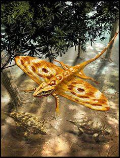 Coelurosauravus (diápsido avicéfalo del Pérmico, 255 MA) (Alain Bénéteau)