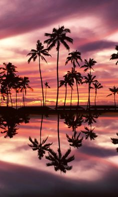 sunset over ala moana beach park honolulu oahu hawaii - Tap to see more amazing reflection wallpapers! - @mobile9