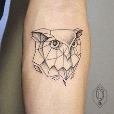Coruja geométrica - polygon owl