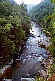 Chattooga River - Georgia