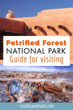 Guide to what it's like and things to do at the Petrfied Forest National Park in Arizona, USA. The park runs right through Route 66 and is an amazing spectacle of petrified wood, the painted desert and wonderful wildlife. A perfect addition to any road trip in the area. Route 66 Road Trip, Road Trip Hacks, Usa Travel, Travel Tips, Petrified Forest National Park, Painted Desert, Historic Route 66, Old Gas Stations, Forest Painting