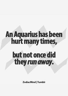 Aquarius Quotes, Aquarius Facts, Aquarius Zodiac, Aquarius Traits, Things Aquarius, Fun Zodiac, Zodiac Facts, Zodiac Sign, Astrological Sign