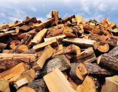 Share This: Guide to the Best Firewood