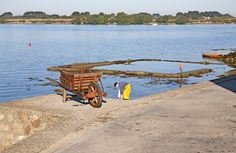 Pêcheur à Saint Cado