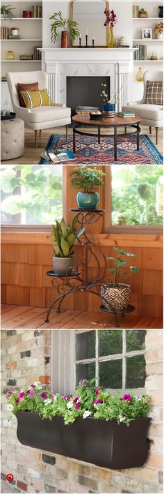 home, plants need to grow, plants plants vs zombies garden warfare 2 playstation jersey plants direct, how to clean silk plants and trees, plastic saucers round lowest prices. Decor, Interior Design Living Room, House Design, Palm House Plants, Family Room, New Homes, Family Room Decorating, Interior Design Kitchen, Trending Decor