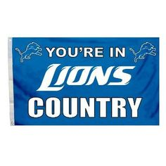Detroit Lions 3 Ft. X 5 Ft. Flag W/Grommetts