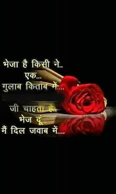 Love Connection, 15 August, Dil Se, Feelings