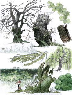 MAN ARENAS — Did 'I ever mentioned that I like to draw trees? ...